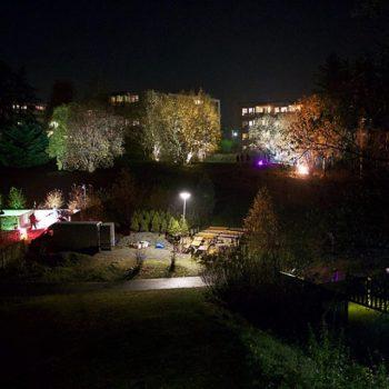Et stort område med trær i et nabolag er kunstferdig lyssatt