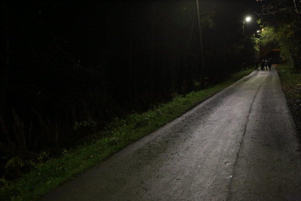 Mørklagt gang- og sykkelvei langs mørkt skogterreng