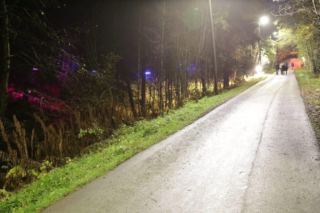 Opplyst gangvei med belysning i skogterreng på begge sider
